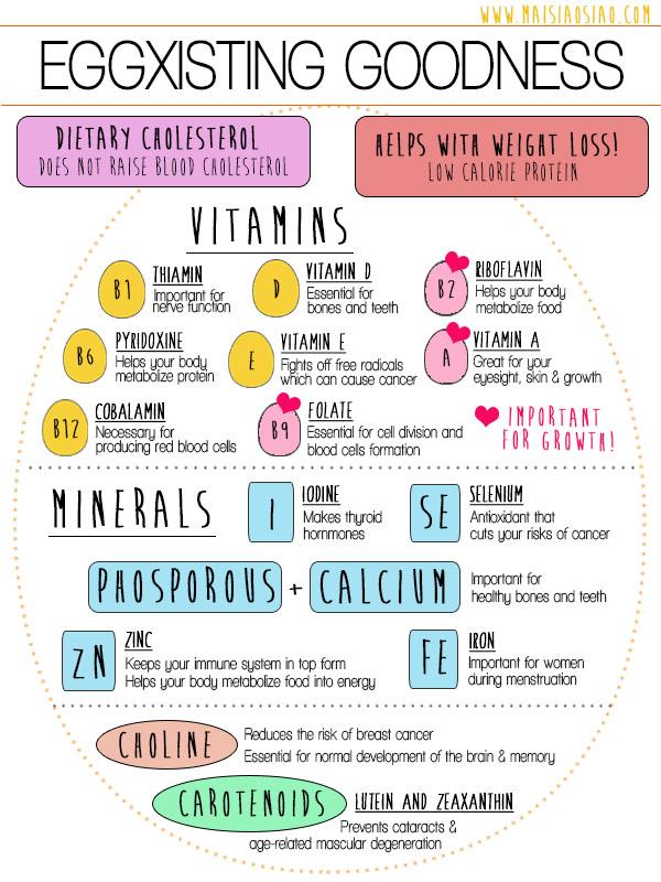 Eggs-infographic maisiaosiao.com